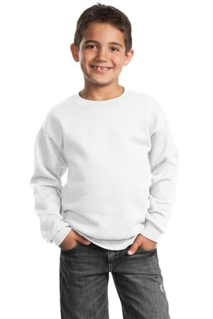 port & company-youth core fleece crewneck sweatshirt pc90y